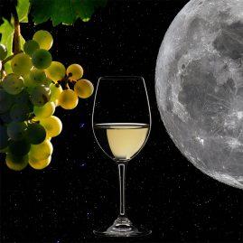 Wine & Moon
